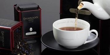 dammann-the-500