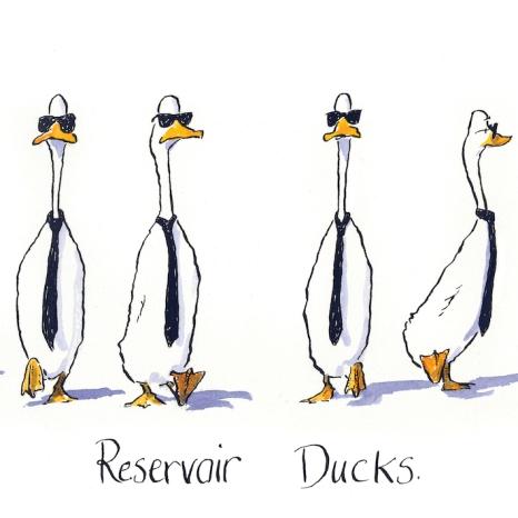 reservoir-ducks